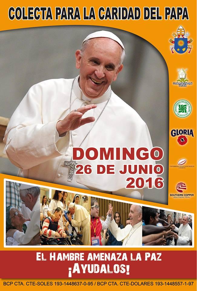 Afiche Campaña Óbolo de San Pedro 2016